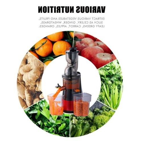New Masticating Cold Extractor Fruit Vegetable